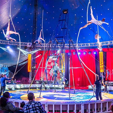 Mall of Georgia - Promo - Garden Circus image