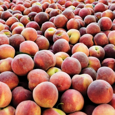 The Peach Truck is Coming to Town!