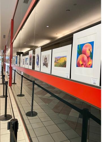 Braintree Public Schools Artwork Display!