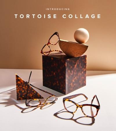 New Tortoise Collage
