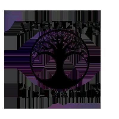 Apollo's Fine Fashions