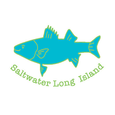 Saltwater Long Island