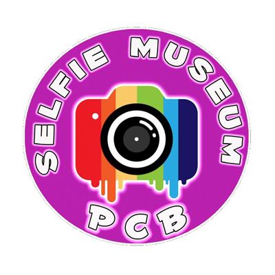 Selfie Museum PCB